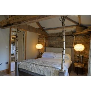 Silver birch bed
